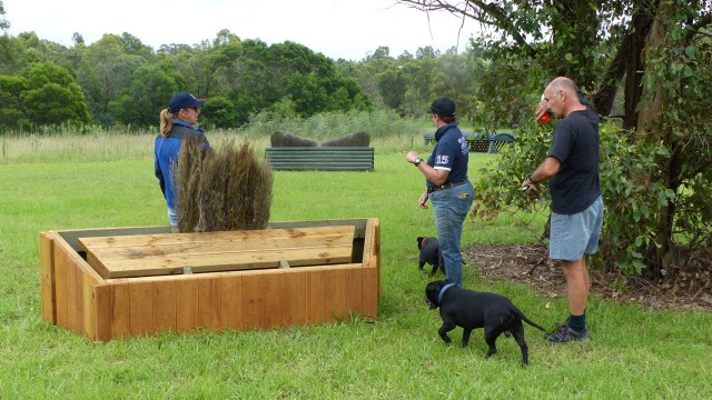 Sandy, Fi, jump builder Brett and his trusty assistants checking out the almost finished 95cm brush box