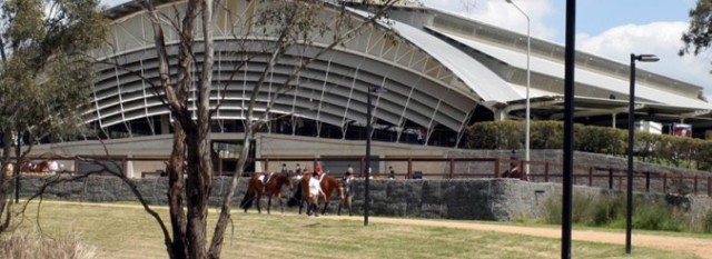 siec_horses_in_front_of_arena